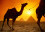 14 Days Turkey & Egypt Combined Tour Package